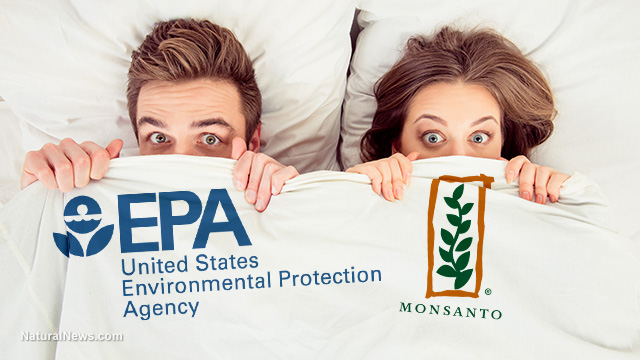 Shocking letter from dead EPA scientist reveals EPA bureacrats being bribed by Monsanto to hide scientific evidence of glyphosate causing cancer